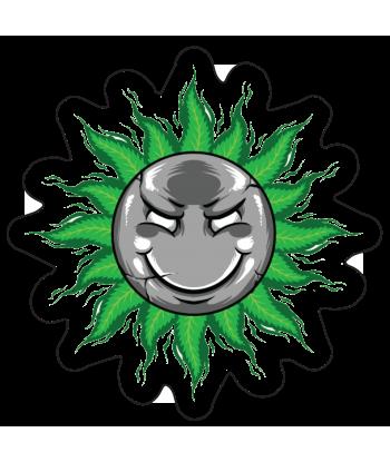 "Sticker ""Sun is Green"""