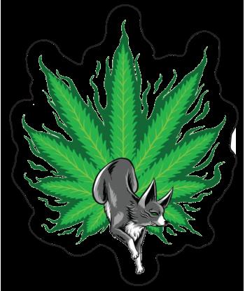 """Sticker """"Fox is Green"""""""